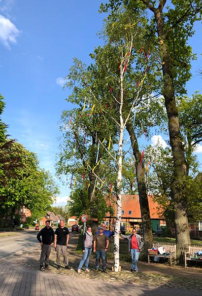 Pfingstbaum-Mieden